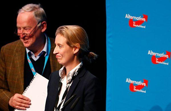 Alice Weidel (R) and Alexander Gauland (L) (ODD ANDERSEN/AFP/Getty Images)