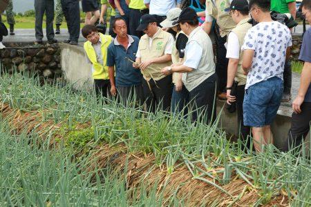 农委会主委林聪贤在视察葱田损害情况。(曾汉东/大纪元)