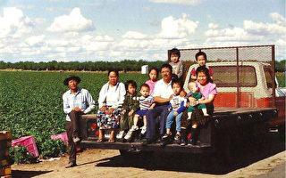 助亞裔農場主開發特色食材供應鏈