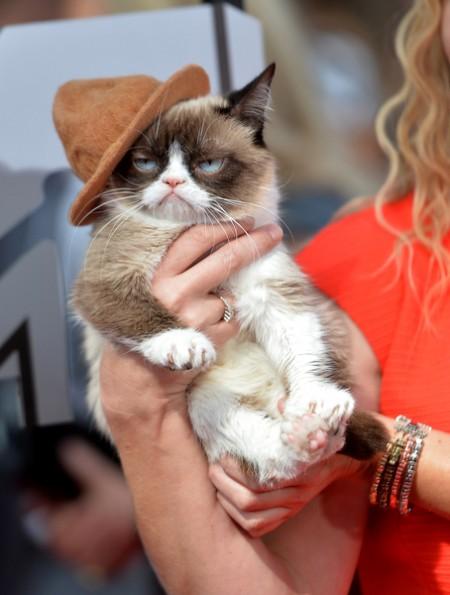 2014年4月,不爽猫现身MTV奖颁奖礼。(Michael Buckner/Getty Images)