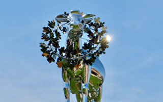 巨牛雕塑原型从未到过万锦市府自作多情?