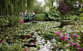 参观法国吉维尼莫内花园 自然与艺术之旅