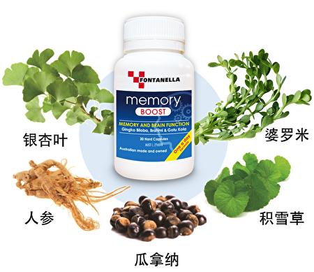 Fontanella健腦記憶提升精華,1粒即含5種天然草本健腦成分,特別添加維他命B和葉酸,強化大腦能量。(Fontanella提供)