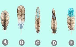 測試:憑直覺選一根羽毛 立即看出你隱藏的性格