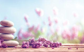 草本与美容