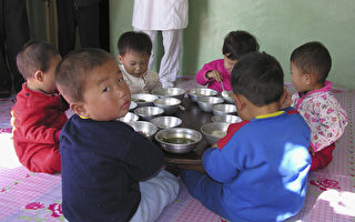 朝进口中国粮食激增 专家:满足精英口腹之欲