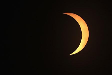 8月21日伊利诺伊州 Carbondale市的日偏食奇观。 ( Scott Olson/Getty Images)