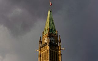 渥太华今夏雨水多 降雨多次创新纪录