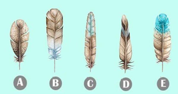 五根羽毛选出你最喜欢的那一根,看出你隐藏的那一面。