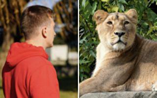 獅子見到他就撲進他懷裡 其後緣由超暖心
