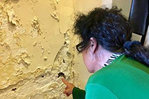 大约一平方米的墙皮已烂,每天都有大片的石灰落到地上。(周月谛/大纪元)