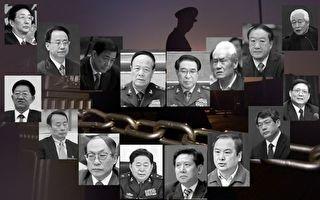 蔡慎坤:为反腐喝彩也为腐败忧虑