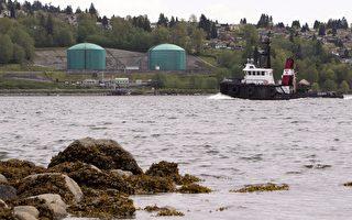 國家能源局:跨山油管碼頭可開工