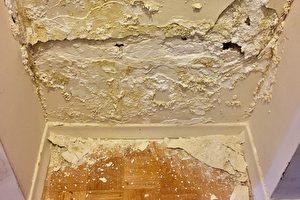 墙皮变得很薄,甚至出现直径约两公分的窟窿。(周月谛/大纪元)