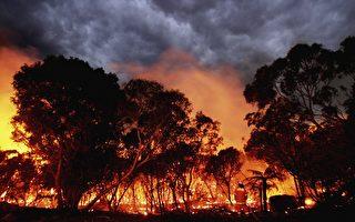 维州东部林区发生大火 或燃烧数周