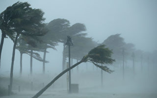 艾玛飓风是个大怪兽 这13件事你需要了解
