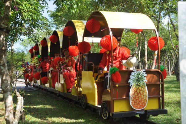 富兴村乘坐轻轨小火车穿梭在凤梨田园及平地森林中。(詹亦菱/大纪元)