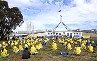 澳洲法輪功集會 中共活摘器官再引國會關注