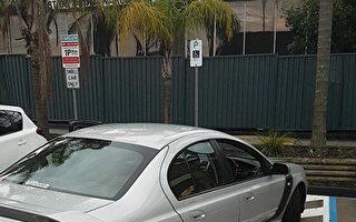 詐用殘疾人停車證 洛縣博覽會場罰71起