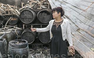 北加州纳帕26年有机酒庄一夜焚毁