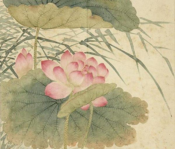 清程琳《莲花芦苇》,现藏台北故宫博物院。(公有领域)