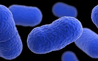 生食易染李斯特菌 拟列法定传染病