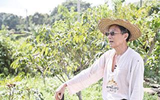 雜誌老闆身兼農夫 劉達文:耕田讓我身心放鬆