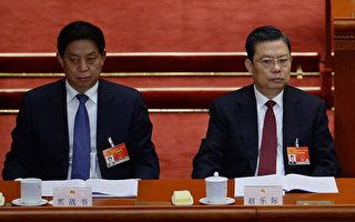 中紀委稱反腐「九龍治水」不行 專家解析