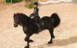 黝黑大馬貌似平常 當牠轉過頭來 原是「全球第一帥」