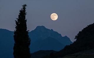 台湾古典诗:中秋醉月