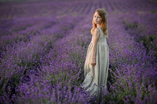美麗的女孩在日落的薰衣草的領域。