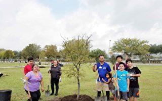 市政組織植樹活動  改善資貧社區公園環境