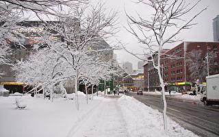 蒙特利尔11月12日星期日或有今冬首场降雪