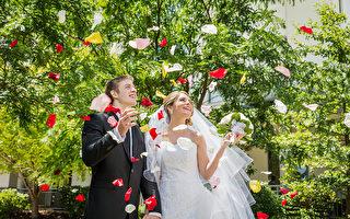 Novotel Sydney Norwest酒店室外花園婚禮(商家提供)