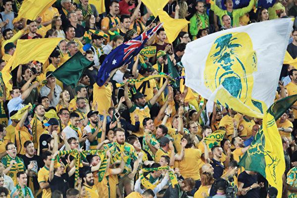 澳洲球迷庆祝胜利。 (Mark Evans/Getty Images)
