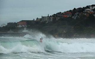 悉尼库吉给冲浪者脊椎造成损伤概率较大