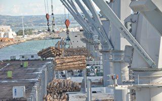 创历史纪录 纽最大港口半年利润增长13%