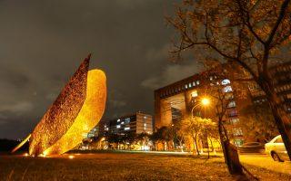 西班牙藝術家巨獻 大型紫荊葉飄落清華大草原