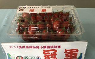 优质小果番茄最佳产地  嘉义县勇冠全台