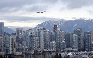 加统计局:多温两地海外买家不到5%