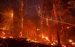 托马斯焚毁消防员圣诞节 或烧至明年