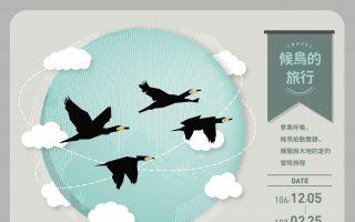 候鳥與大地約定的冒險旅程 來趟鰲鼓濕地