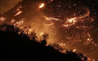 南加州大火烧毁了这对夫妻的房子 废墟中他们却看到惊喜