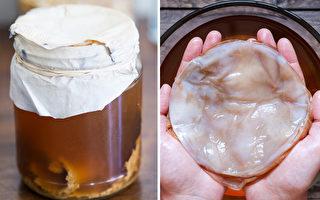 「長生不老藥」紅茶菌 科學證實7大益處