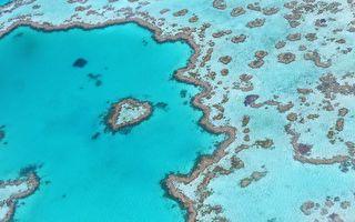澳洲大堡礁有個藍洞 別有洞天