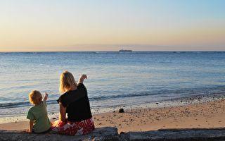 青松絮語:海洋館的對話