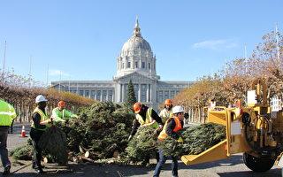 节后圣诞树怎么办  旧金山环保再回收
