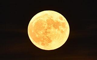 组图:最大满月高挂天上 台湾民众抢拍
