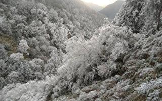 台太平山成冰晶世界 遊客:像明信片超美