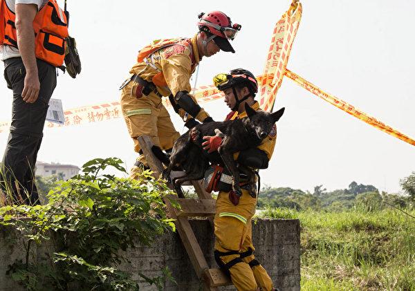 台搜救犬队获国际肯定 成立源起921大地震